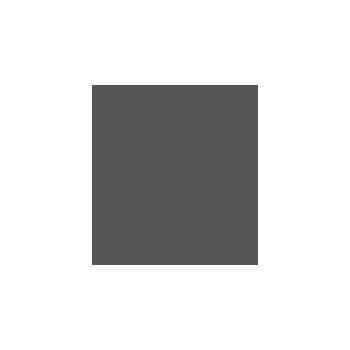 Sustainability Institute logo